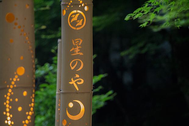 星のや 京都 日本庭園の竹