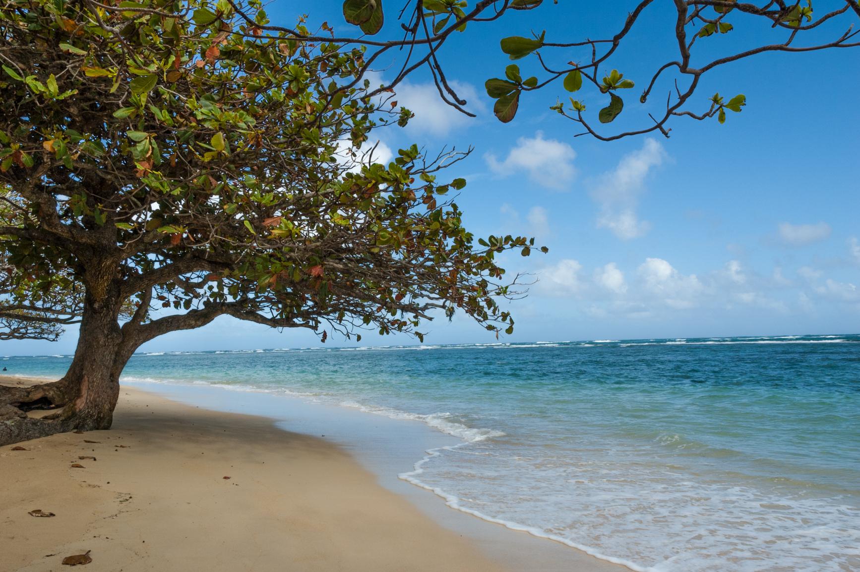 ハワイ、オアフ島のビーチ
